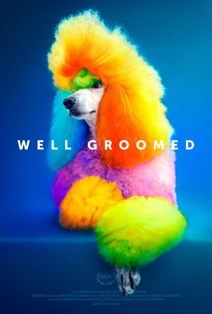 A multicolored poodle poses in front of a blue background. Text readsWell Groomed.
